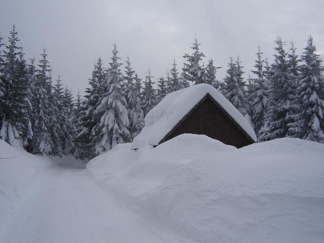 Zasnežená strecha malého domu uprostred zasneženej krajiny, za ktorou sú zasnežené stromy.jpg